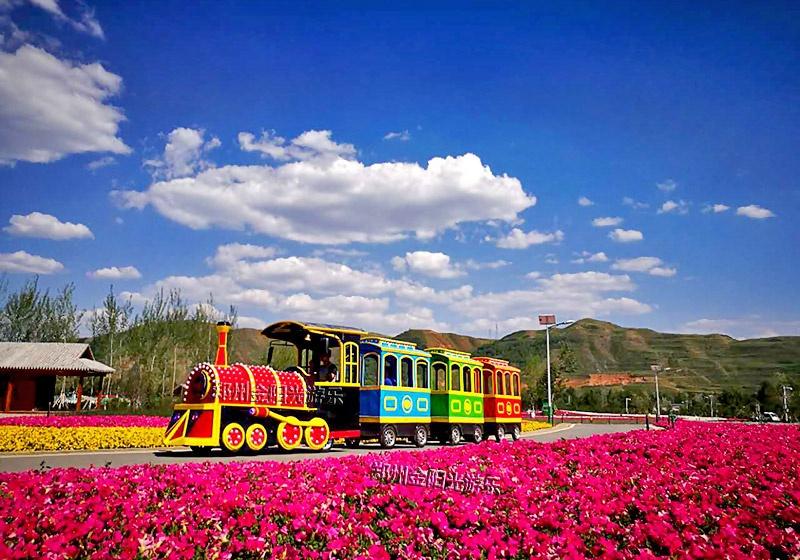 观光火车游乐设备